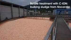 Bulking sludge before C-ION
